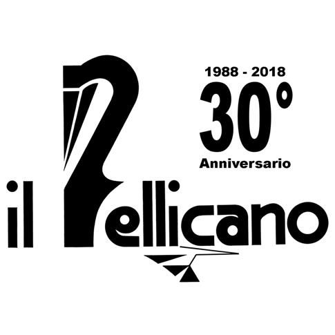 Cartoleria Il Pellicano di Pellicca Andrea & C. sas P.iva 00953010964